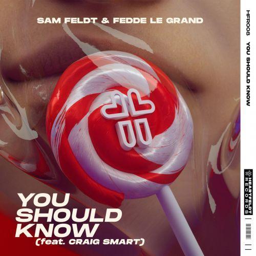 Sam Feldt & Fedde Le Grand - You Should Know
