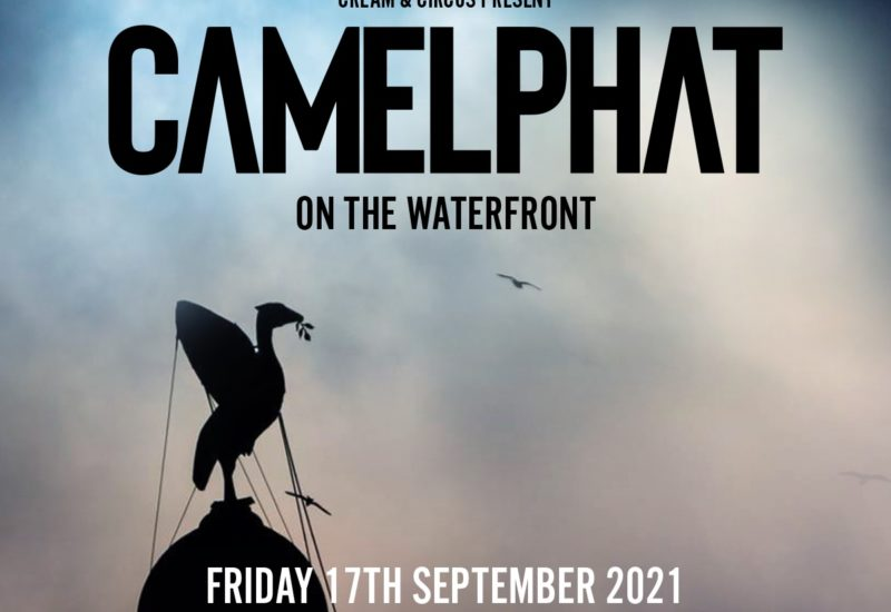 CamelPhat on the Waterfront
